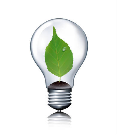 bulb light: Eco light bulb with green leaf. Vector.