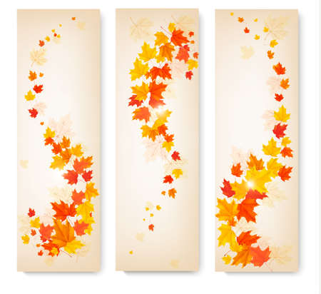 falls: Three autumn banners with colorful leaves Vector