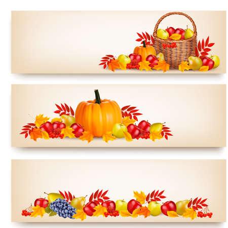 dynia: Trzy Happy Thanksgiving banery. Wektor. Ilustracja
