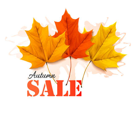 Autumn sales banner with colorful leaves. Vector. Illustration