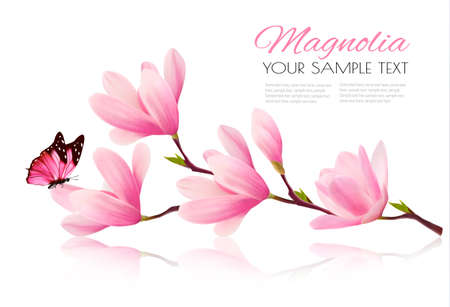 Flower background with blossom branch of pink magnolia and butterfly. Vecto Vettoriali