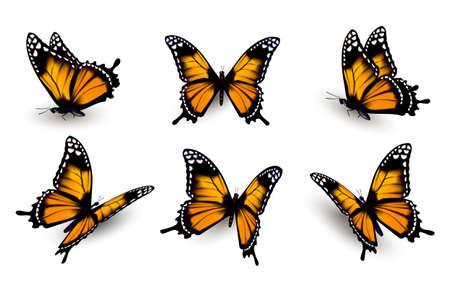 pink: Sechs Schmetterlinge eingestellt. Illustration