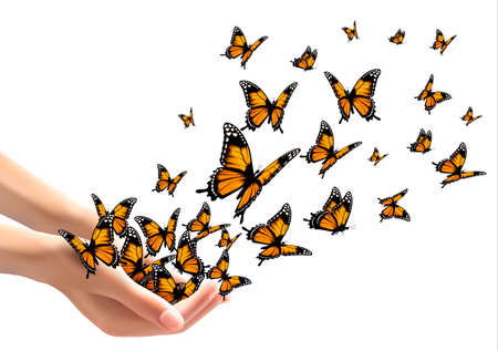 releasing: Hands releasing butterflies. Vector illustration