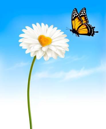 mariposas amarillas: Margarita con un medio en forma de corazón y una mariposa. Vector.