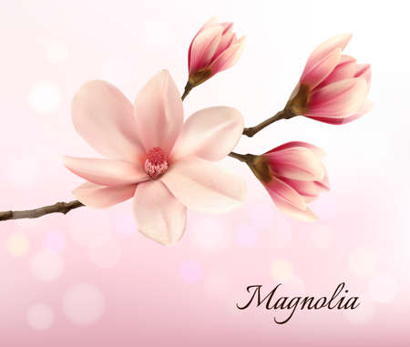Branch with two pink magnolia flowers. Vector.