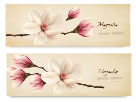 magnolia: Two retro beautiful magnolia banners. Vector.