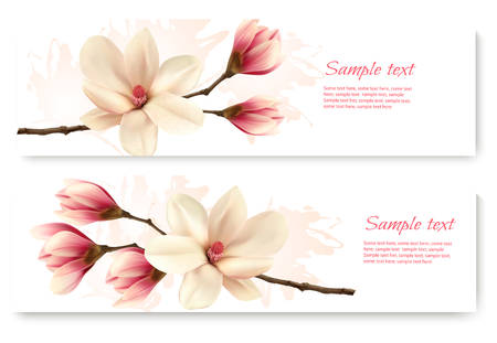 magnolia tree: Two beautiful magnolia banners. Vector.