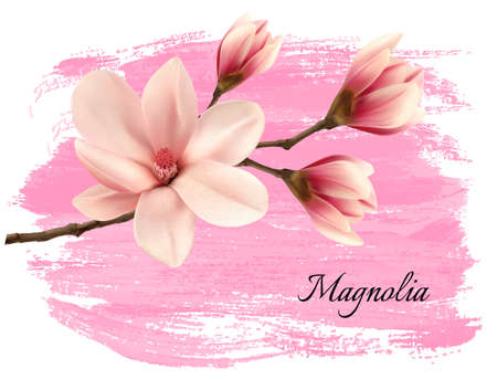 pink paint: Pink paint magnolia branch banner. Vector.