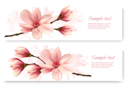 Two beautiful magnolia banners. Vector.