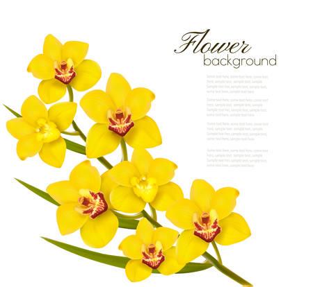 Holiday gele bloemen achtergrond. Vector.