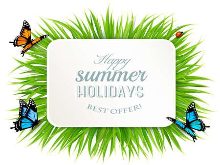 ladybird: Happy summer holidays with grass, butterflies and ladybird.