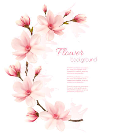 Spring background with blossom brunch of pink flowers.