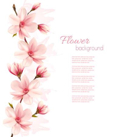 magnolia tree: pink magnolia background.