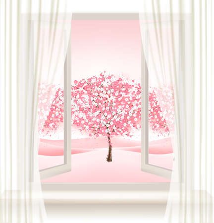 Pink cherry blossom tree view from a window.