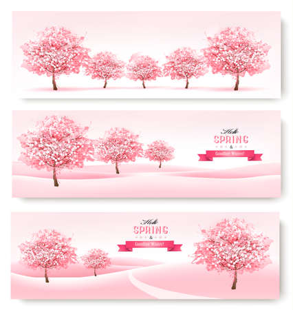 magnolia tree: Three spring banners with pink cherry blossom trees. Illustration