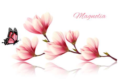 flores moradas: rama de magnolia hermosa con una mariposa.