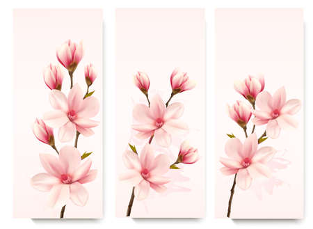 isolated flower: Set of nature flower magnolia banners. Illustration