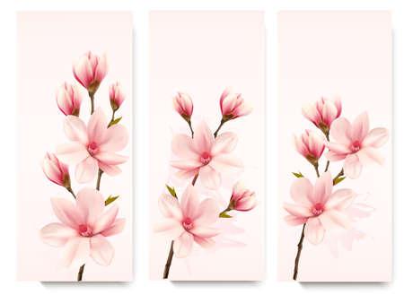 magnolia tree: Set of nature flower magnolia banners. Illustration