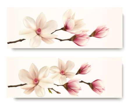 magnolia tree: Two magnolia banners.