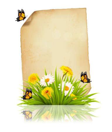 Vecchio foglio di carta con fiori e farfalle.