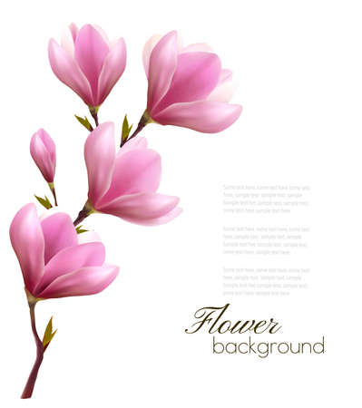 magnolia tree: Nature background with blossom branch of pink flowers Illustration