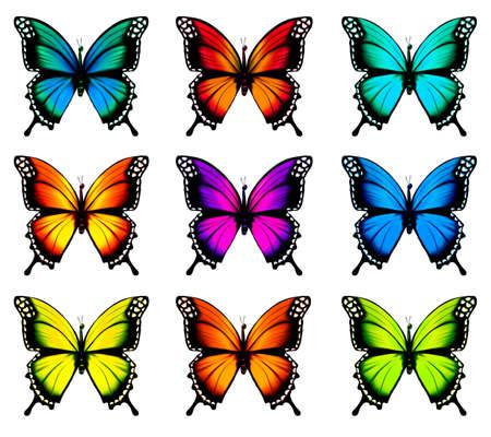 Collectie van kleurrijke vlinders, vliegen in verschillende richtingen.