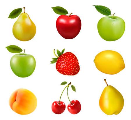 mango leaf: Big group of different fruit. Vector. Illustration