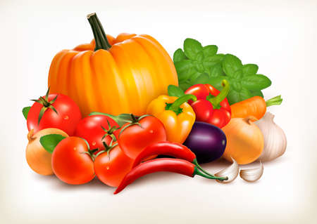 veggie: Fresh vegetables isolated on white background. Vector background. Illustration