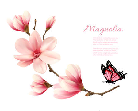 Beautiful pink magnolia branch with a butterfly. Vector.