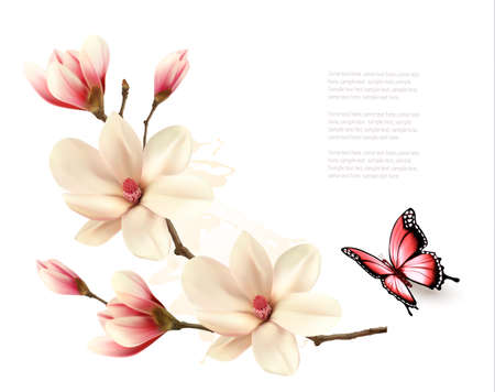 Beautiful white magnolia branch with a butterfly. Vector.