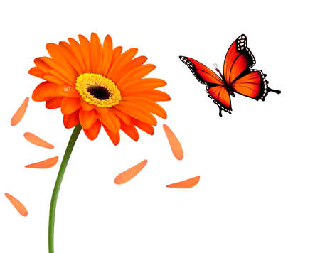 Nature summer orange flower with butterfly. Vector illustration.