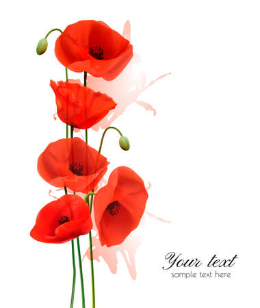 papaver: Nature summer background with red poppies. Vector.