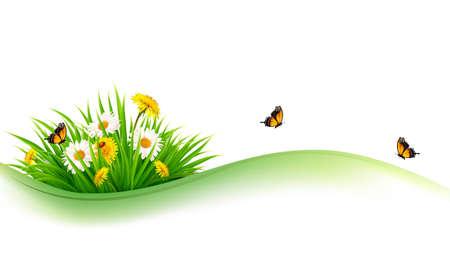 luz roja: la naturaleza de fondo de verano con la hierba, las flores y las mariposas. Vector. Vectores