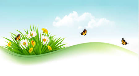 butterfly background: Summer background with grass, flowers and butterflies. Vector.