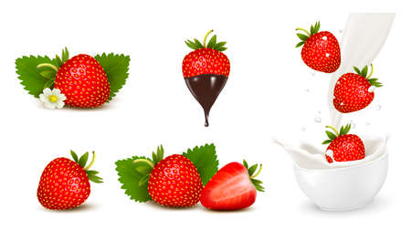 fruitage: Set of ripe sweet strawberry and flower with leaves and splash of milk. Vector.