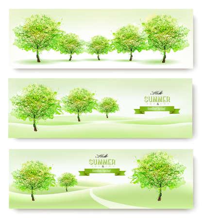 summer nature: Three nature summer banners. Vector.