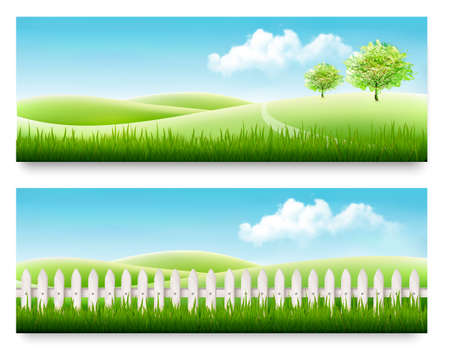 hedge trees: Nature summer banners with green grass and blue sky. Vector