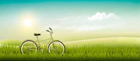 summer meadow: Summer meadow landscape with a bicycle. Vector.