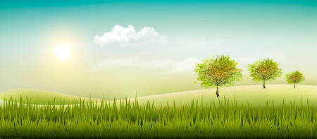 beautiful landscape: Beautiful summer countryside landscape background. Vector.