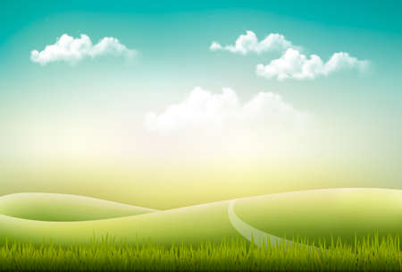 horizons: Beautiful summer countryside landscape background. Vector.