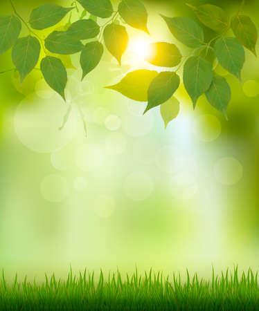 Lato tło natura z zielonymi liśćmi. Wektor.