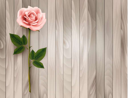 pink rose: Single pink rose on an old wooden background. Vector.