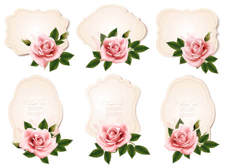 rosas rosadas: Collection of retro greeting cards with pink roses. Vector illustration