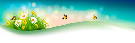 Nature summer background with grass, flowers and butterflies. Vector. Illustration