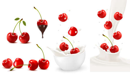 fruitage: Set of ripe sweet cherries with leaves and splash of milk. Vector. Illustration