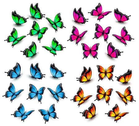 Sammlung von Farbe Schmetterlinge. Vektor