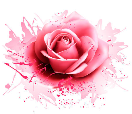 Greeting card with pink rose. Vector Vetores
