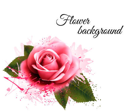 pink rose: Flower background with a pink rose. Vector.
