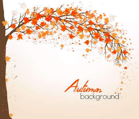 november: Autumn abstract background with colorful leaves. Vector Illustration