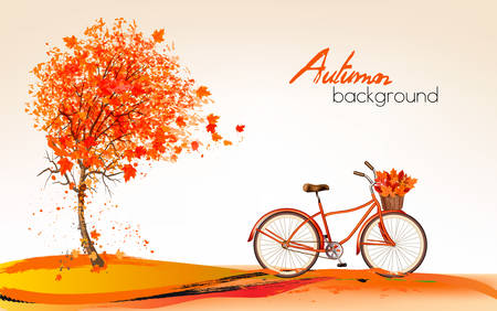 summer border: Autumn background with a tree and a bicycle. Vector